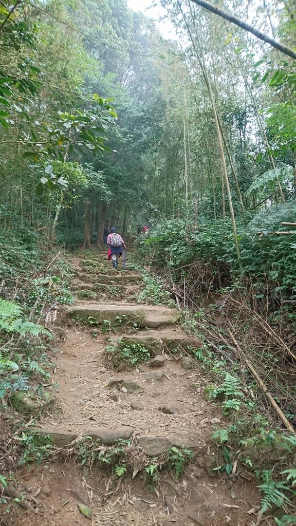 馬那邦山(錦雲山莊登山口):DSC_0461.JPG