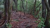 七星山的泥土步道100.11.29.~101.1.3.下午:DSC02006.JPG