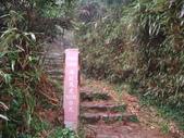 七星山的泥土步道100.11.29.~101.1.3.下午:DSC02070.JPG