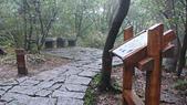七星山的泥土步道100.11.29.~101.1.3.下午:DSC03226.JPG