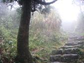 七星山的泥土步道100.11.29.~101.1.3.下午:DSC02072.JPG