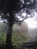 七星山的泥土步道100.11.29.~101.1.3.下午:DSC02073.JPG