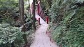 頂湖~水車寮步道~水尾山~二子坪親山步道:DSC_0226.JPG