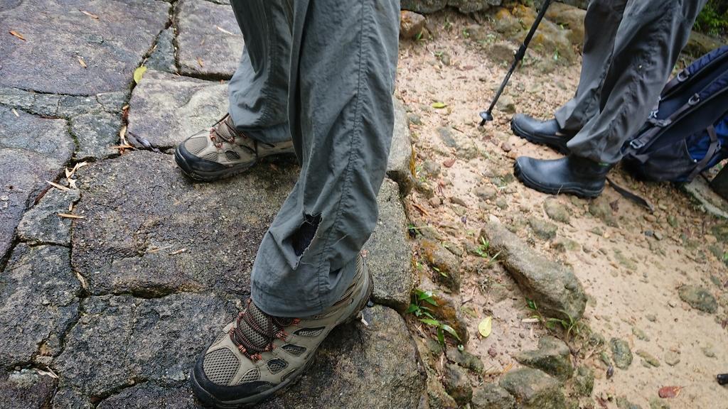 DSC_0389.JPG - 旅聯網十四周年版主登山活動