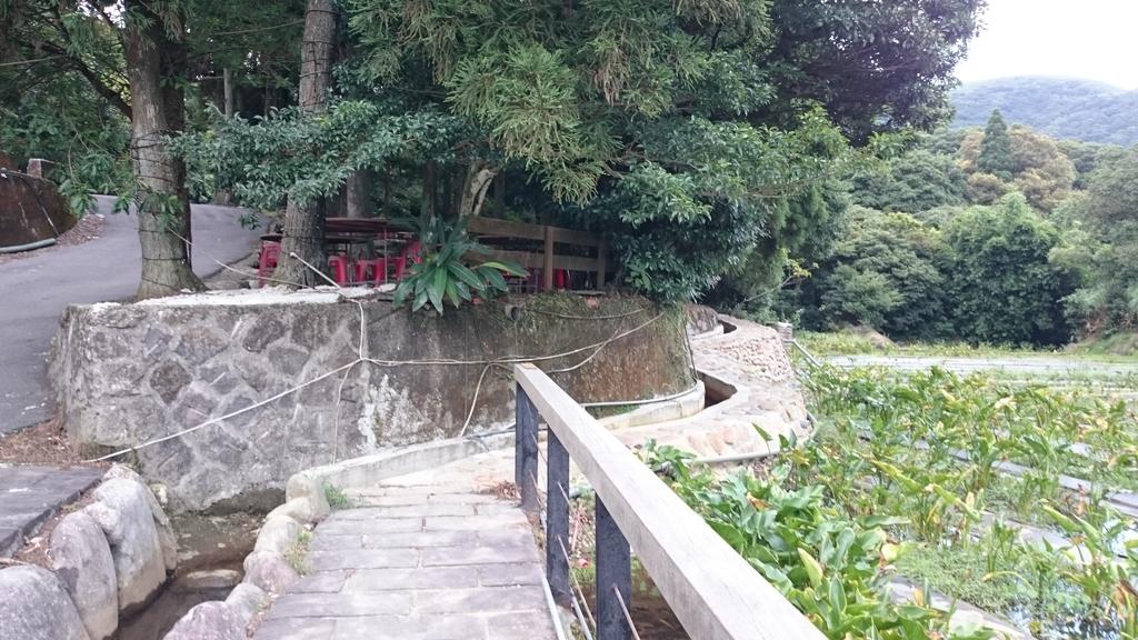 頂湖~水車寮步道~水尾山~二子坪親山步道:DSC_0268.JPG