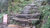 七星山的泥土步道100.11.29.~101.1.3.下午:DSC03229.JPG