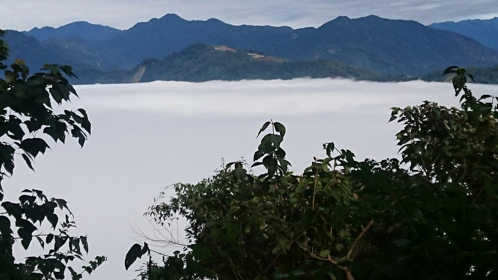 馬那邦山(錦雲山莊登山口):DSC_0518.JPG