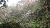 七星山的泥土步道100.11.29.~101.1.3.下午:DSC03231.JPG
