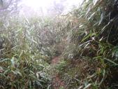 七星山的泥土步道100.11.29.~101.1.3.下午:DSC02076.JPG