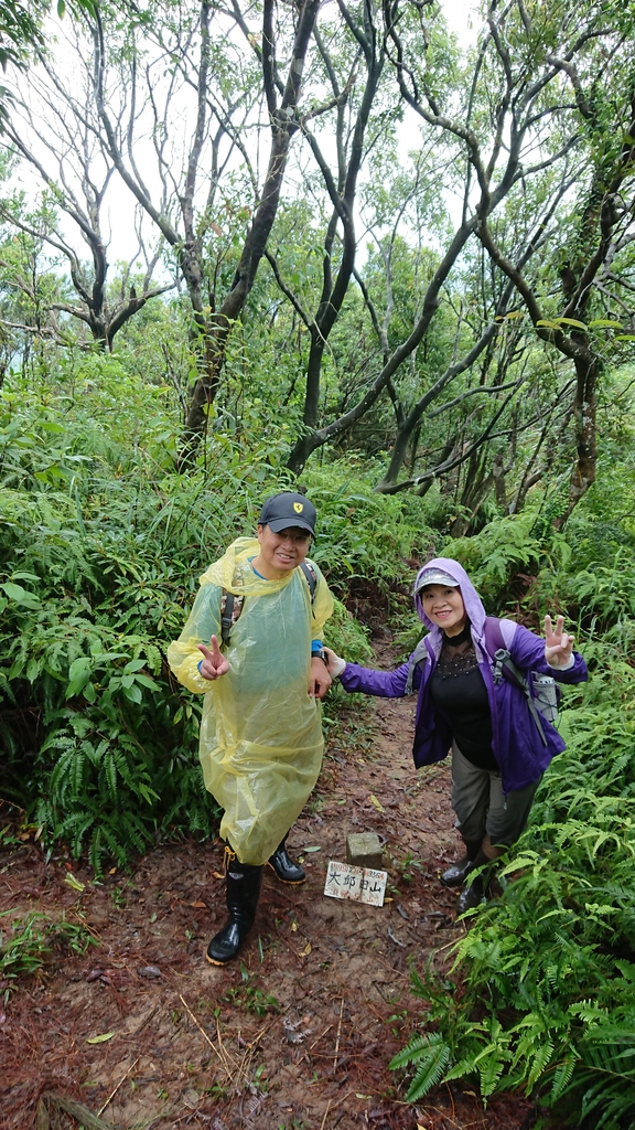 DSC_0428.JPG - 旅聯網十四周年版主登山活動