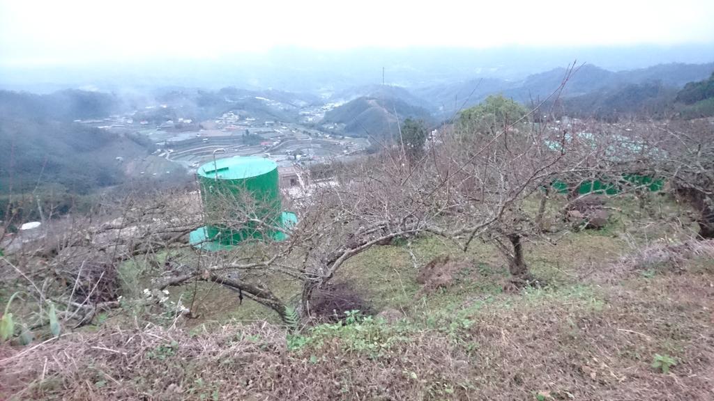 馬那邦山(錦雲山莊登山口):DSC_0697.JPG
