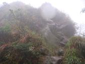 七星山的泥土步道100.11.29.~101.1.3.下午:DSC02079.JPG