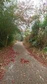 馬那邦山(錦雲山莊登山口):DSC_0401.JPG