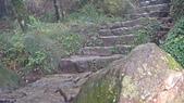 七星山的泥土步道100.11.29.~101.1.3.下午:DSC03234.JPG