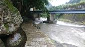 福田居-北47鄉道:DSC_0044.JPG