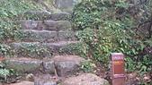七星山的泥土步道100.11.29.~101.1.3.下午:DSC03235.JPG