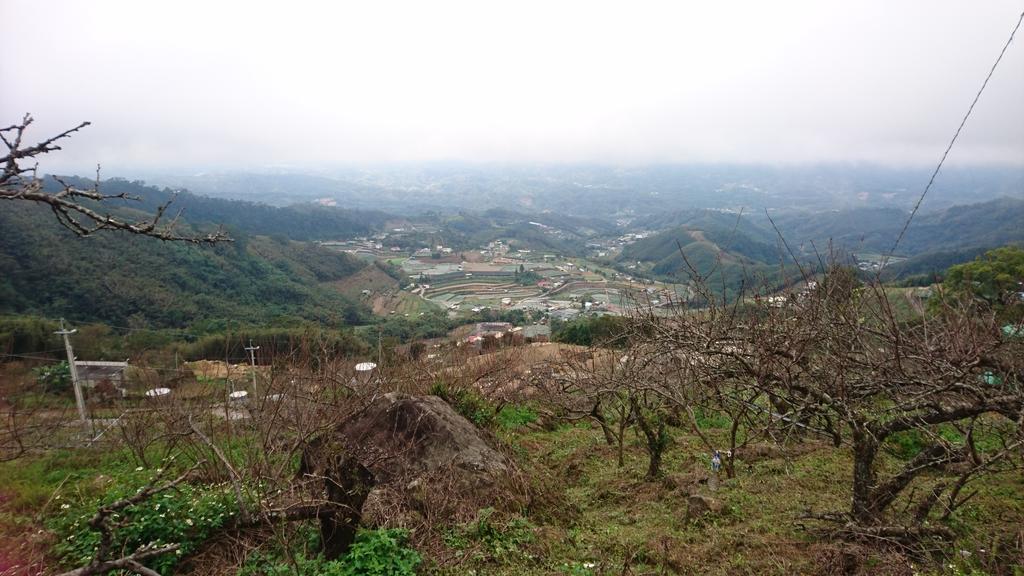 馬那邦山(錦雲山莊登山口):DSC_0385.JPG