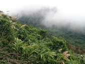馬那邦山(錦雲山莊登山口):DSC_0391.JPG