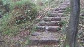 七星山的泥土步道100.11.29.~101.1.3.下午:DSC03237.JPG