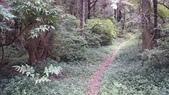 頂湖~水車寮步道~水尾山~二子坪親山步道:DSC_0172.JPG