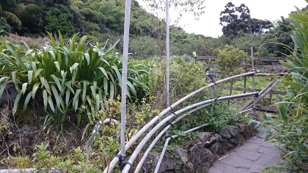 頂湖~水車寮步道~水尾山~二子坪親山步道:DSC_0236.JPG