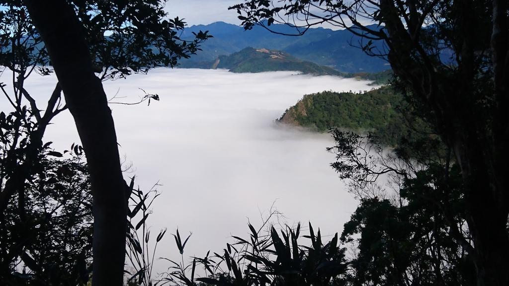馬那邦山(錦雲山莊登山口):DSC_0579.JPG