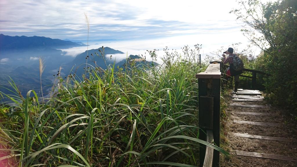 馬那邦山(錦雲山莊登山口):DSC_0665.JPG