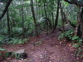 七星山的泥土步道100.11.29.~101.1.3.下午:DSC02017.JPG