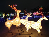 2012彰化鹿港花燈之旅:彰化鹿港花燈之旅076.JPG