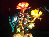 2012彰化鹿港花燈之旅:彰化鹿港花燈之旅093.JPG