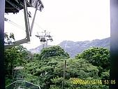 山茶貓纜纜車:D1030066