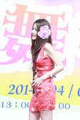 無双美麗生活 幸福巡演 跨界新國樂美麗新視界:IMG_0262.JPG