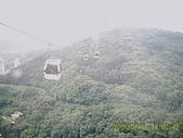 山茶貓纜纜車:D1030064