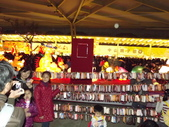 2013台北燈會:DSCF9165.JPG