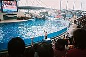 花東旅行程:F1000025