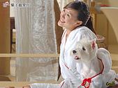 卡哇依可愛大頭狗:e_800_600
