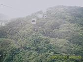 山茶貓纜纜車:D1030063