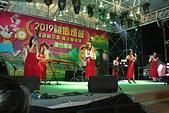 2019桃園燈會2/12-2/24: