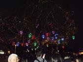 2013台北燈會:DSCF9166.JPG