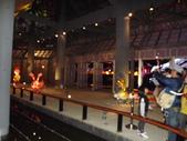 2013台北燈會:DSCF9173.JPG
