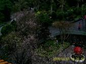 山水之景-金色淡水:PIC_0103.JPG