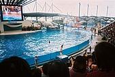 花東旅行程:F1000026