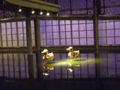 2013台北燈會:DSCF9175.JPG