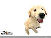 卡哇依可愛大頭狗:d-2_800