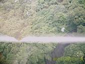山茶貓纜纜車:D1030060