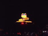 2013台北燈會:DSCF9169.JPG