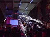 2013台北燈會:DSCF9171.JPG