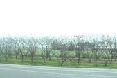 彰化二林市區街道風景:IMG_6414.JPG