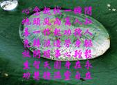 七字迴文: