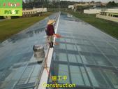 1204 溫室-屋頂-強化玻璃採光罩-清除水垢工程 - 相片:1204 溫室-屋頂-強化玻璃採光罩-清除水垢工程 (25).JPG